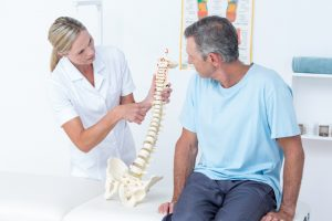 A healthy spine, Dees Integrated Health, Chiropractor.